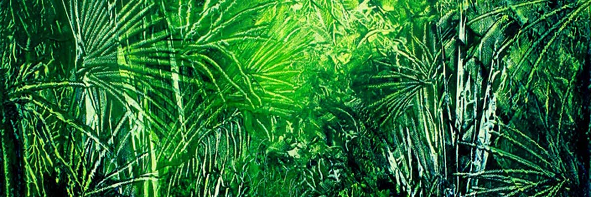 Rainforests of New Zealand paintings